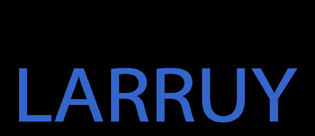 logo banderolle larruy